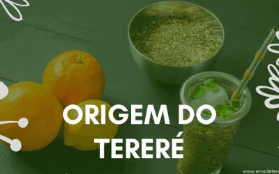Origem do Tereré – A origem dessa bebida