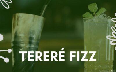 Tereré Fizz: Saiba como preparar essa bebida!
